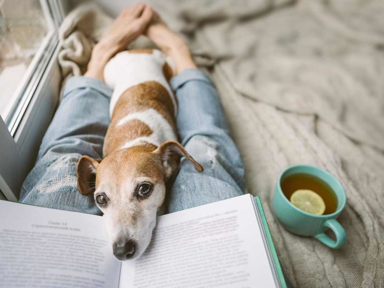 Winter Reads: The 12+ Best Women's Health Books for Learning About Yourself